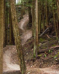 Coast Gravity Park Trail